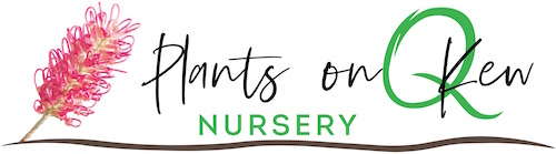Nursery Port Macquarie | Landscaping | Plants on Kew